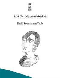 New edition of the book <em>Los Surcos Inundados (The Flooded Furrows)</em>